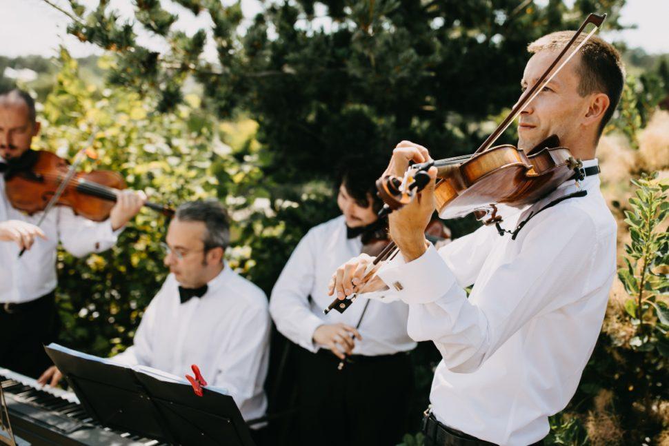 Cvartet nunta Cluj Wedding Music